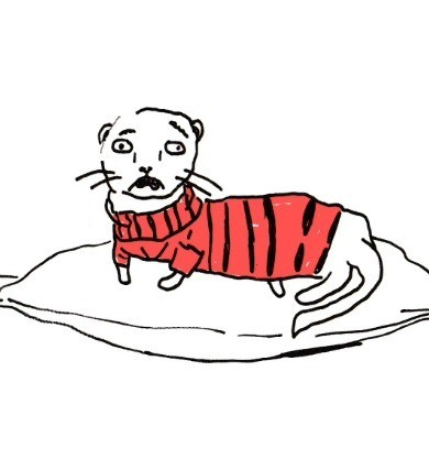 drawing of a ferret